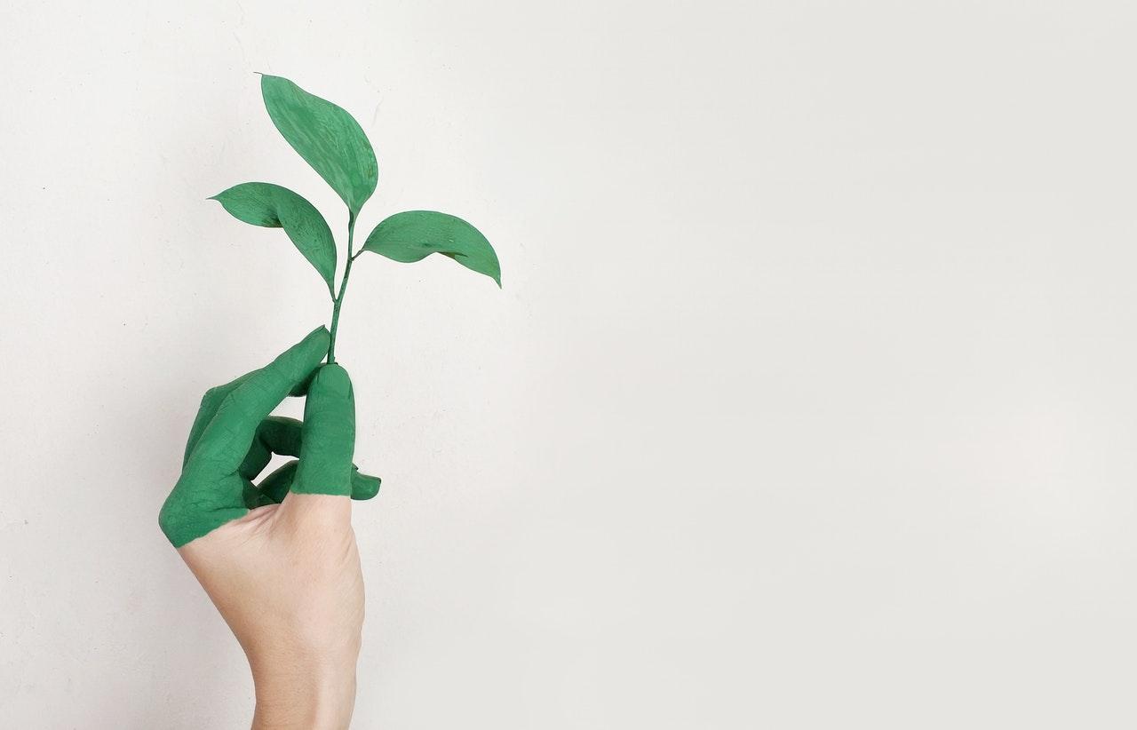 NexusAT ottiene la certificazione ISO 9001 e la certificazione ambientale iso 14001