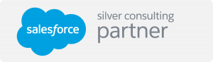 salesforce-silver-consulting-partner